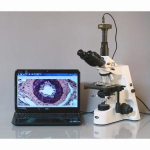 t690-microscope-6